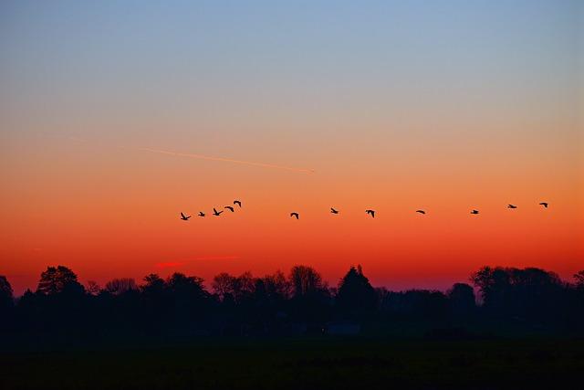 4am, early morning, dawn